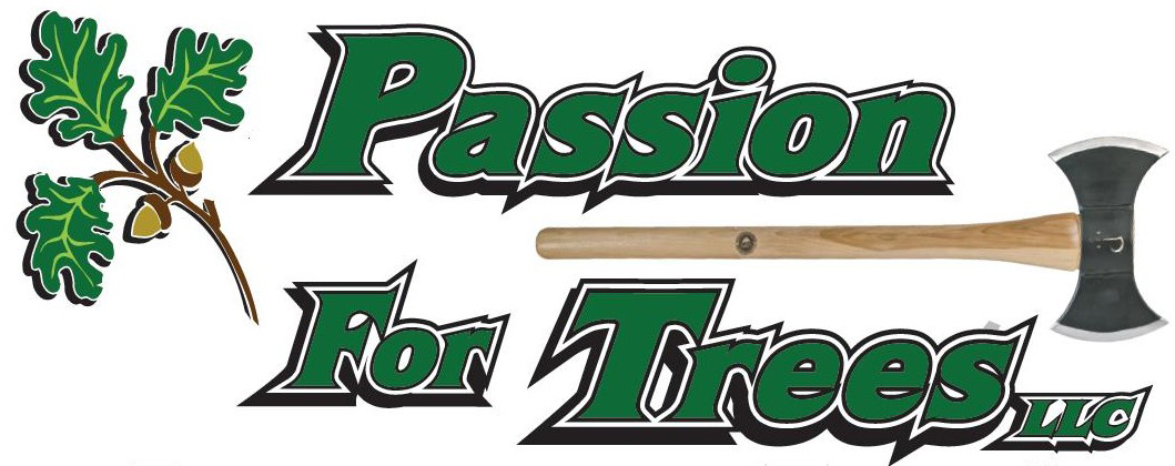 Passion for Trees Southington CT 06489 Complete Tree Service