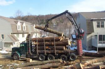 Wood Removal  Southington CT Passion for Trees